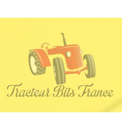 Peinture David Brown Jaune Primvere 1L - €19.99 - Tracteur Bits France