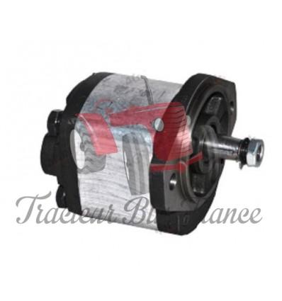Power Steering Pump - models with dynamo
