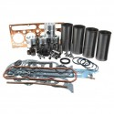 Engine Kit for AD4.203 MF 65, 155, 158 and 165